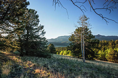 Photograph - First Light At Mueller State Park by Lon Dittrick