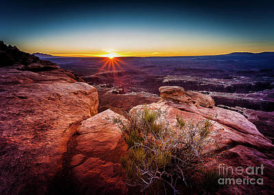 Photograph - First Light At The Canyonlands by Steven Reed