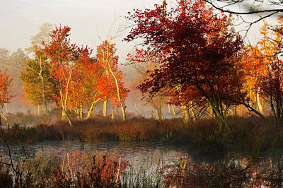Pine Barrens Photograph - First Light At The Pine Barrens by Louis Dallara