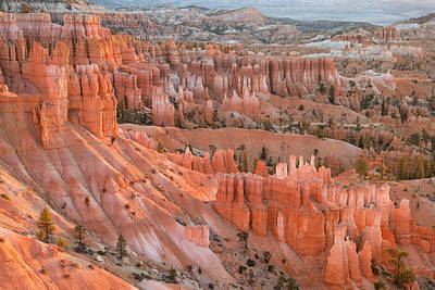 Photograph - First Light, Bryce Canyon National Park by Denise Bush