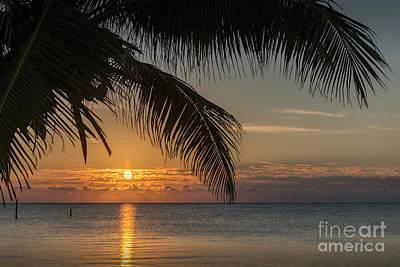 Photograph - First Light Dawn Morning Sunrise by David Zanzinger