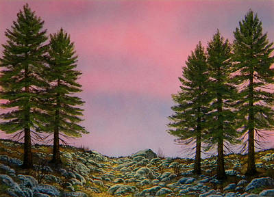 Painting - First Light by Frank Wilson