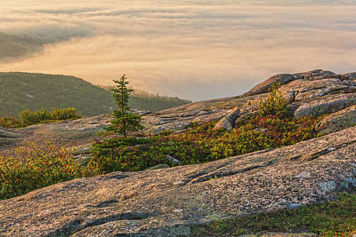 Photograph - First Light On Cadillac Mountain by Angelo Marcialis