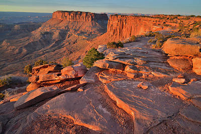 Photograph - First Light On Grand View Point And Junction Butte - Canyonlands Np by Ray Mathis