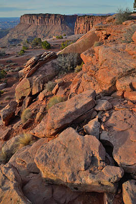 Photograph - First Light On Grandview Point In Canyonlands National Park by Ray Mathis
