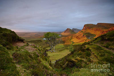 Isle Of Skye Photograph - First Light by Nichola Denny