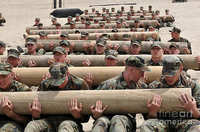 Physical Training Photograph - First Phase Buds Students Perform Log by Stocktrek Images