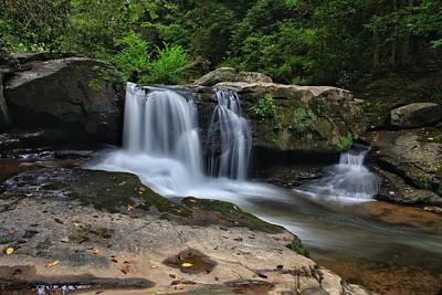 Photograph - First Sign Of Carolina Fall by Chris Berrier