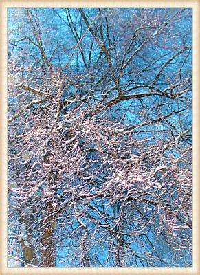 Photograph - First Snow At Dawn by Mario MJ Perron