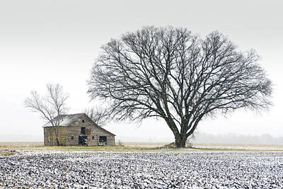 Winter's Approach Art Print by Christopher McKenzie
