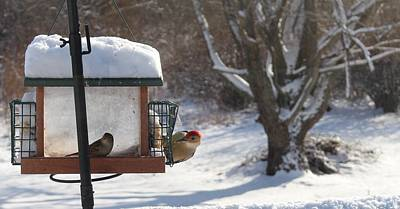 Photograph - First Snow Diners by Georgia Hamlin