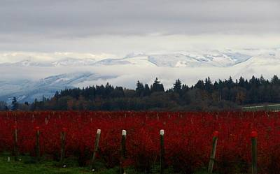 Photograph - First Snow In The Hills by Karen Molenaar Terrell
