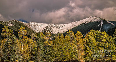 Photograph - First Snow by Robert Bales