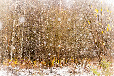 Jenny Rainbow Art Photograph - First Snow. Snow Flakes I by Jenny Rainbow