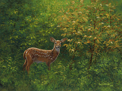 Whitetail Fawn Painting - First Summer by Guy Crittenden