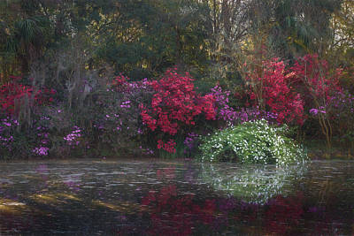 Photograph - First Sun Rays On Red Bridge Pond by Kim Carpentier