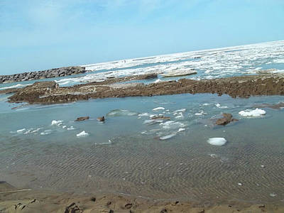 Photograph - First Thaw Of Frozen Lake Erie by Anne Cameron Cutri