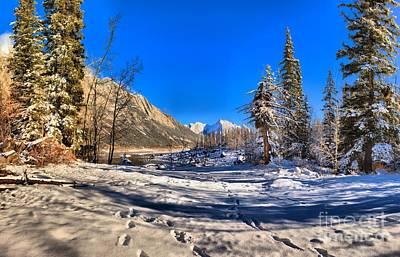 Photograph - First Tracks To Medicine Lake by Adam Jewell