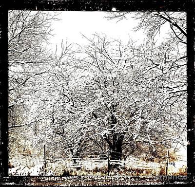 Shower Digital Art - First Winter Snow by Marsha Heiken