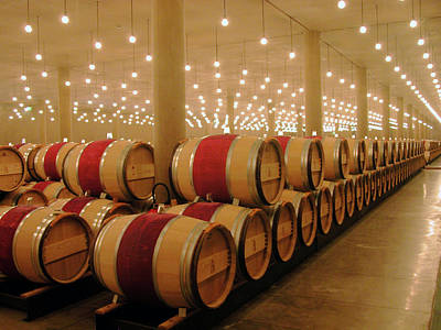 First Year Cellar At Chateau Latour Art Print by Rodger Lindquist
