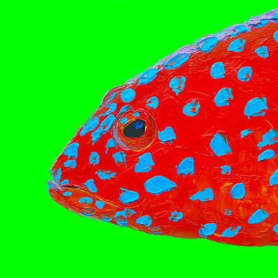 Royalty-Free and Rights-Managed Images - Fish Art - Bathroom Wall Decor by Jan Matson