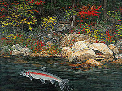 Trout Painting - Fish Art Jumping Silver Steelhead Trout Art Nature Artwork Giclee Wildlife Underwater Wall Art Work by Baslee Troutman