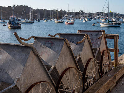 Photograph - Fish Barrels  by Derek Dean