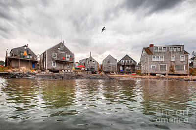 Photograph - Fish Beach by Tom Cameron