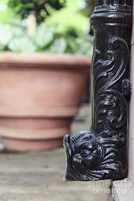 Photograph - Fish Down Spout by Heather Green