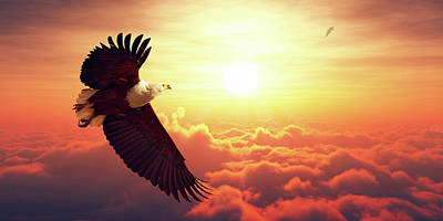 Nature Digital Art - Fish Eagle Flying Above Clouds by Johan Swanepoel