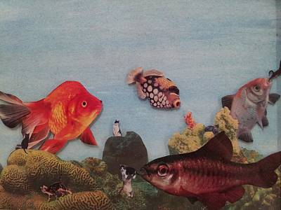 Frightening Mixed Media - Fish Eating Cats. by William Douglas