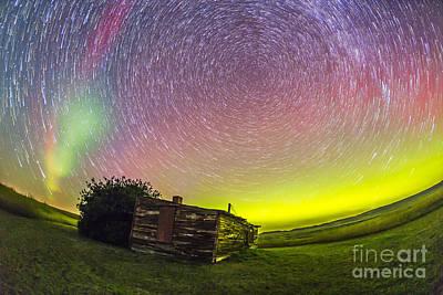 Animals Photos - Fish-eye Lens Composite Of Aurora by Alan Dyer