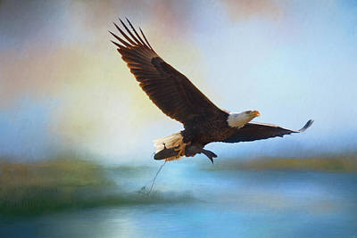 Photograph - Fish For Breakfast Bald Eagle Art by Jai Johnson