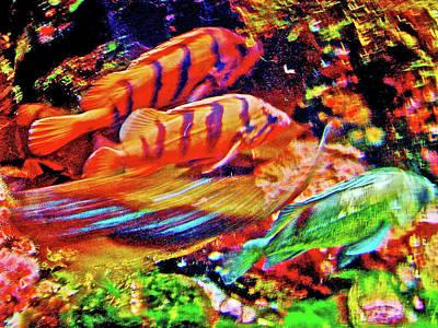 Photograph - Fish In Oregon Coast Aquarium In Newport, Oregon by Ruth Hager