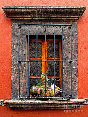 Portal Photograph - Fish In The Window by Mexicolors Art Photography