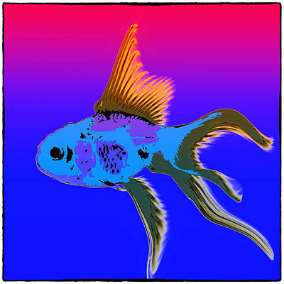 Photograph - Fish by James Bethanis