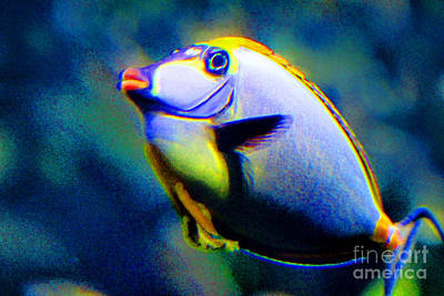 Isolated On Black Background Digital Art - Fish Lips by Karen Adams