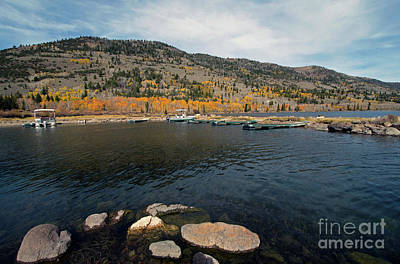 Photograph - Fish Lake Ut by Cindy Murphy - NightVisions