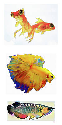 Fish - Original Watercolors Art Print by Roger Smith