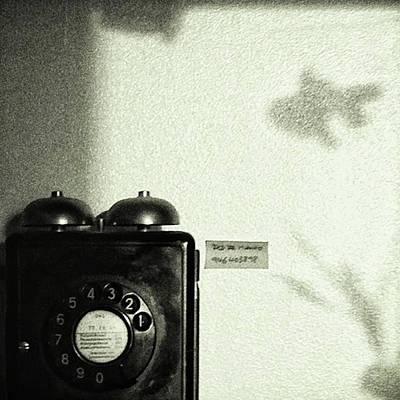 Shadow Photograph - Fish Phone #telephone #fish #shadow by Rafa Rivas
