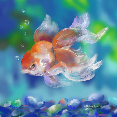 Painting - Fish Plumage by Elaine Pawski