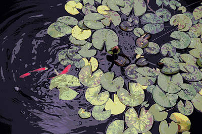 Pond Original by Arun Sarin