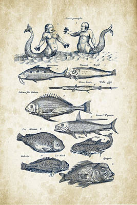 Animals Digital Art - Fish Species and creatures Historiae Naturalis 08 - 1657 - 40 by Aged Pixel