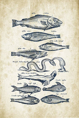 Trout Digital Art - Fish Species Historiae Naturalis 08 - 1657 - 02 by Aged Pixel