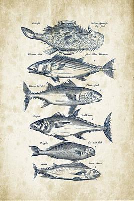 Salmon Digital Art - Fish Species Historiae Naturalis 08 - 1657 - 03 by Aged Pixel