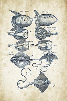 Animals Digital Art - Fish Species Historiae Naturalis 08 - 1657 - 09 by Aged Pixel