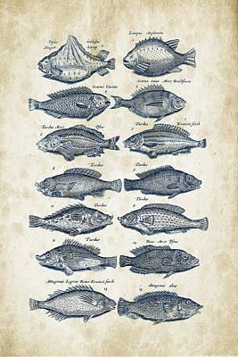 Fantasy Digital Art - Fish Species Historiae Naturalis 08 - 1657 - 13 by Aged Pixel