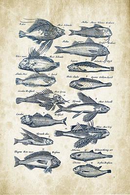 Animals Digital Art - Fish Species Historiae Naturalis 08 - 1657 - 17 by Aged Pixel