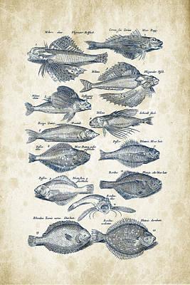 Animals Digital Art - Fish Species Historiae Naturalis 08 - 1657 - 22 by Aged Pixel