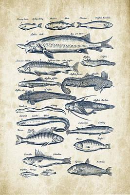 Marine Fish Digital Art - Fish Species Historiae Naturalis 08 - 1657 - 28 by Aged Pixel